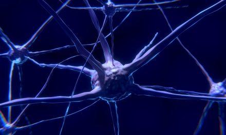 Udar mózgu. VIDEO