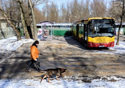 Przed Schroniskiem stanęła wiata i autobus, które posłużą do treningu zwierząt
