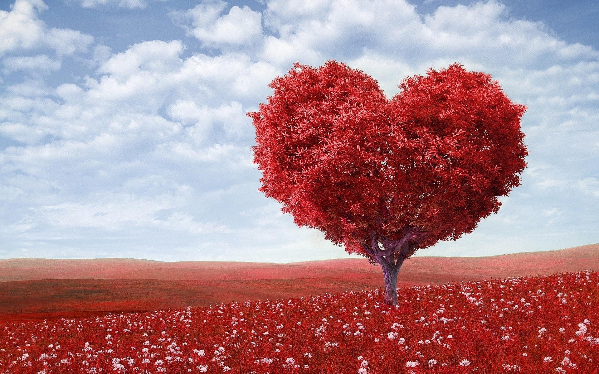 Miłość jak narkotyk – psycholog Sylwia Sitkowska